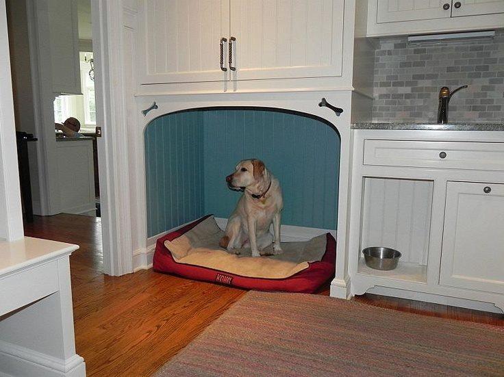 41 pomys w na idealne mieszkanie dla twojego psa lub kota for House plans with pet rooms